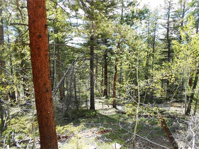 370 Powers Road Fort Garland, CO 81133 - MLS #: 9743620