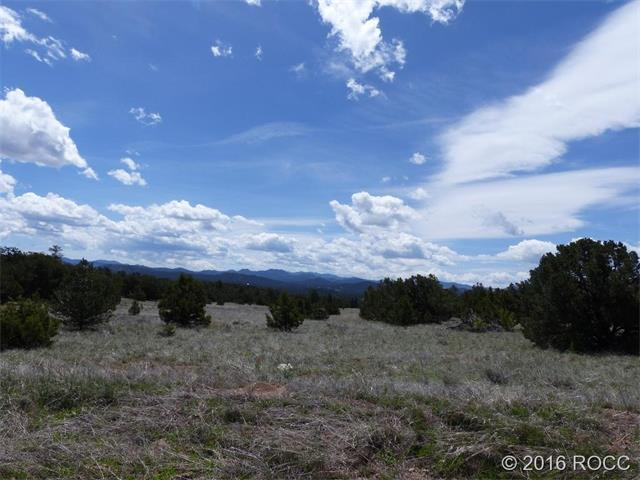 PAINT BRUSH Trail Cotopaxi, CO 81223 - MLS #: C234958