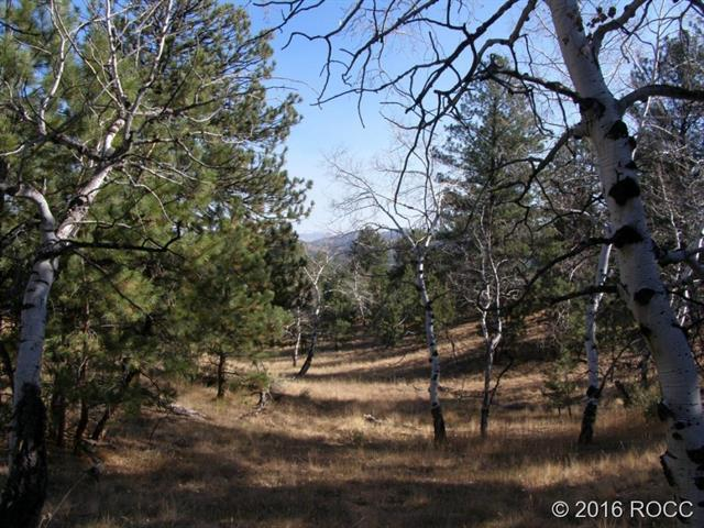 143 ZUNI Trail Westcliffe, CO 81252 - MLS #: C236311