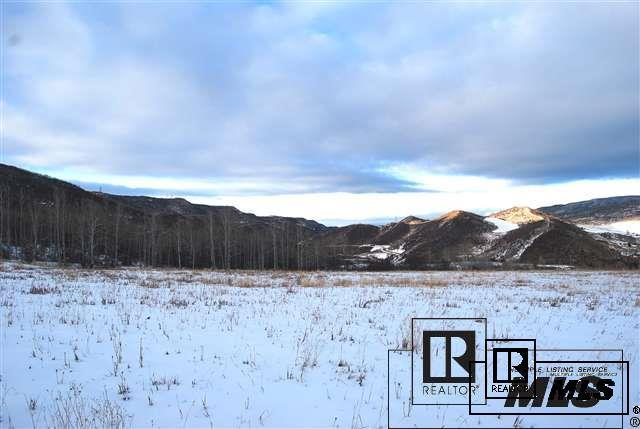 24005 Rossi Lane Oak Creek, CO 80467 - MLS #: S170104